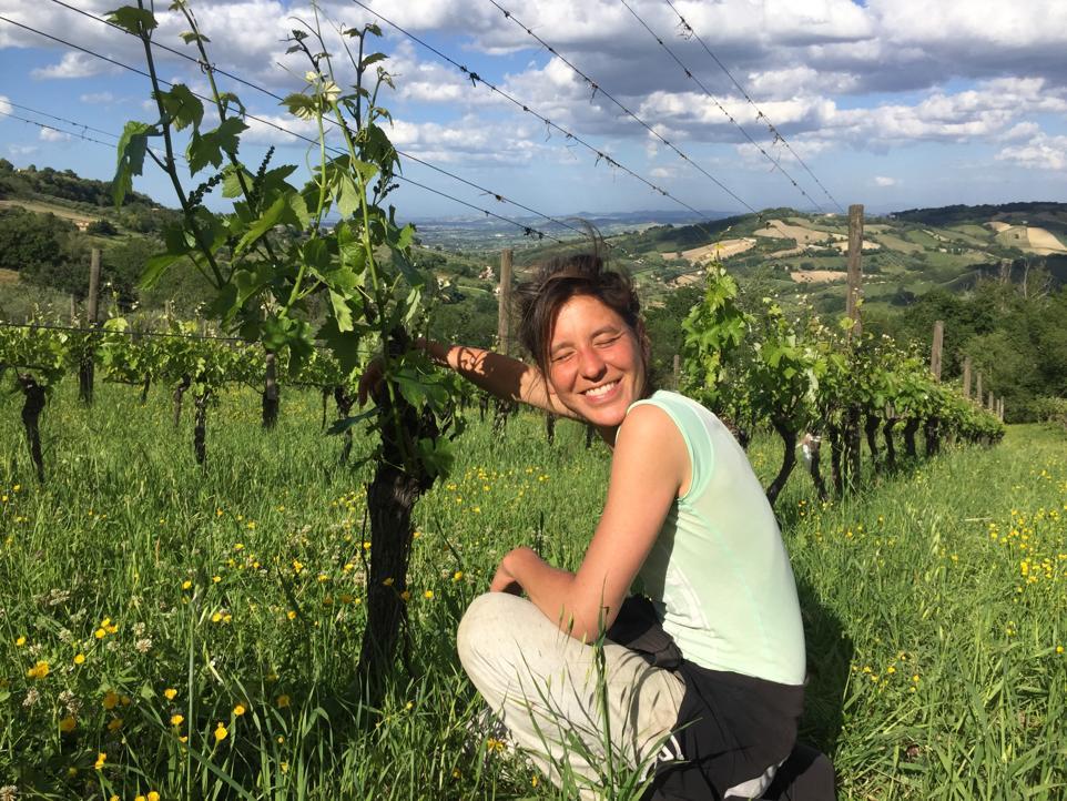 Giulia Fiorentini - Di Giulia - Marche